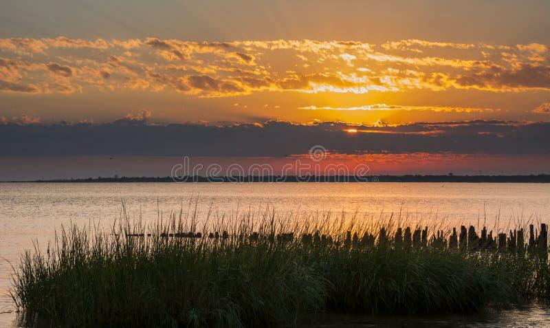 Портовый район восхода солнца стоковое фото rf