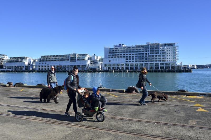 Портовый район Окленда - Новая Зеландия стоковая фотография rf