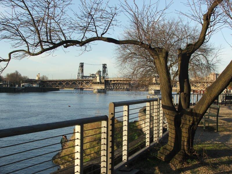 Портовый район Портленда реки Willamette с рельсами, стендами и мостами стоковое фото