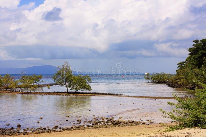 Портовый район 8523 Port Douglas стоковое изображение rf