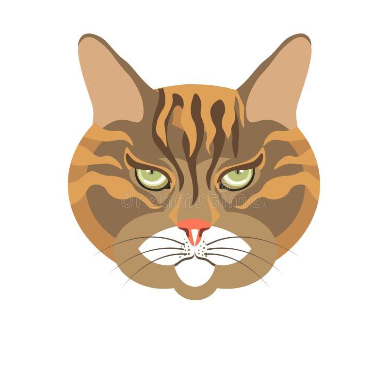 Портрет абиссинского старого кота красочный изолированный на белизне иллюстрация вектора