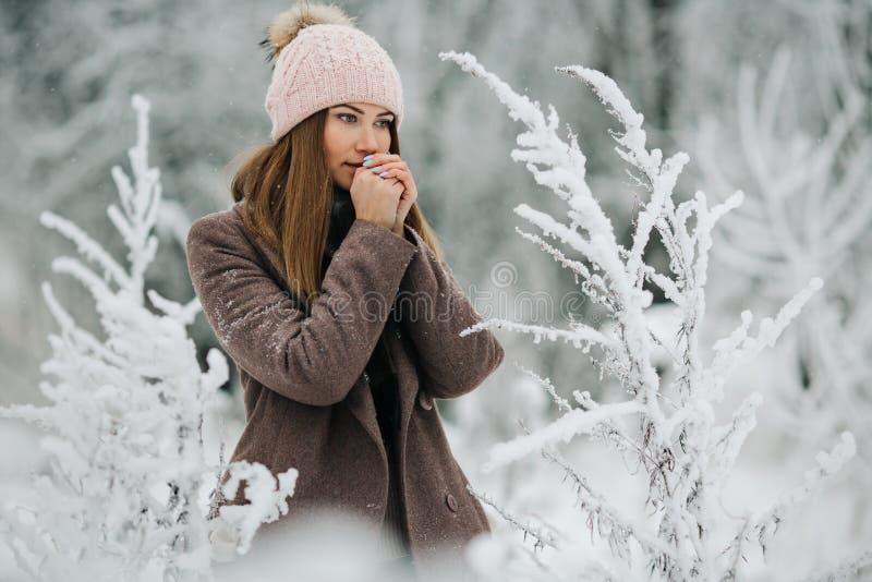Портрет белокурой женщины в шляпе смотря камеру на прогулке в лесе зимы стоковое изображение rf