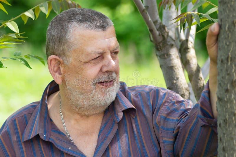Портрет бородатого кавказского положения старшего человека под деревом стоковые изображения