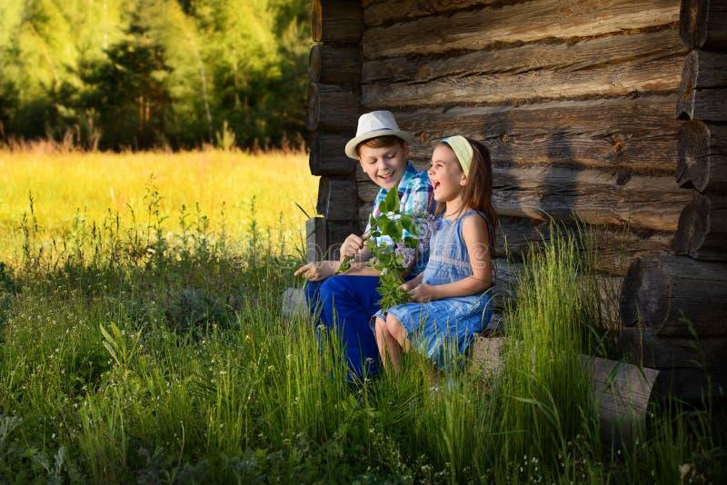 Портрет брата и сестры в деревне стоковое фото rf