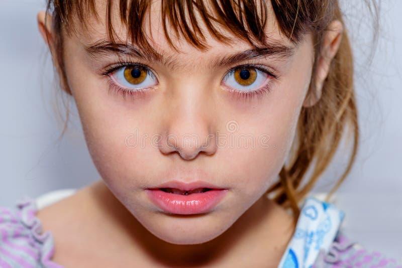 Портрет близкий вверх красивой маленькой девочки с изумительным коричневым цветом стоковое фото