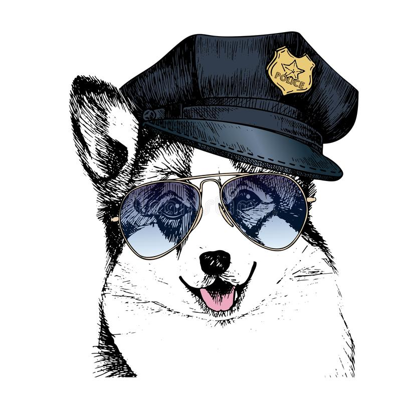 Портрет вектора близкий поднимающий вверх полицейской собаки Пембрук corgi Welsh нося пиковую крышку и солнечные очки иллюстрация вектора