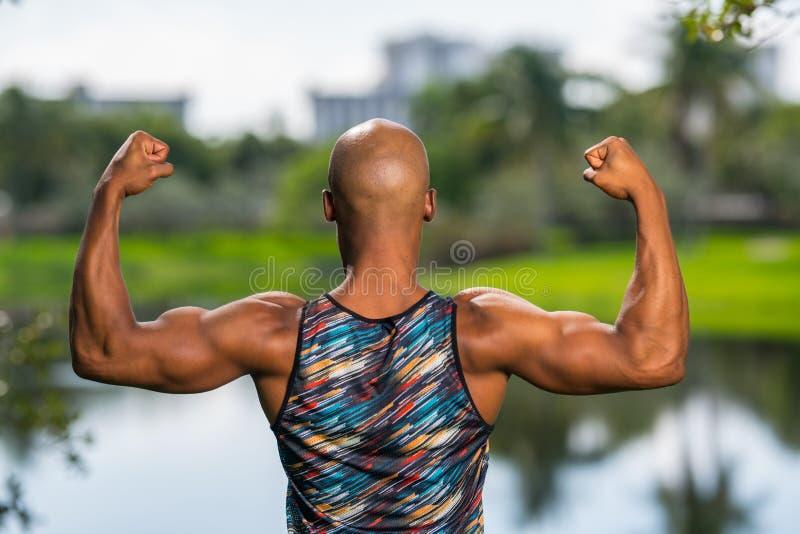 Портрет вида сзади сильного мужского человека изгибая его оружия стоковые фото
