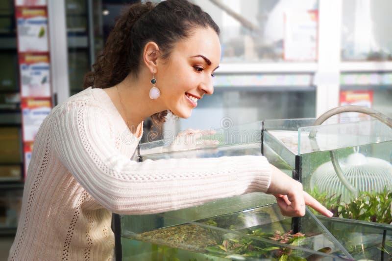 Портрет водорослей детенышей усмехаясь женских выбирая стоковые изображения