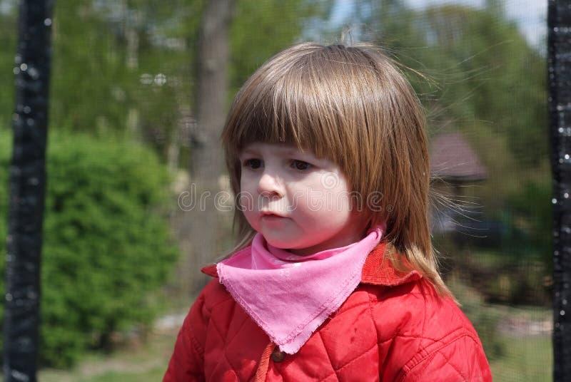 Портрет двухклассной девушки стоковое изображение rf