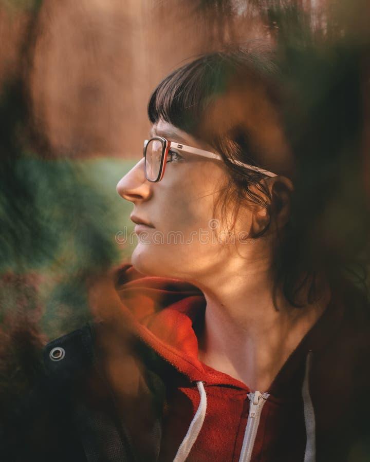 Портрет в профиле женщины природы стоковое изображение rf