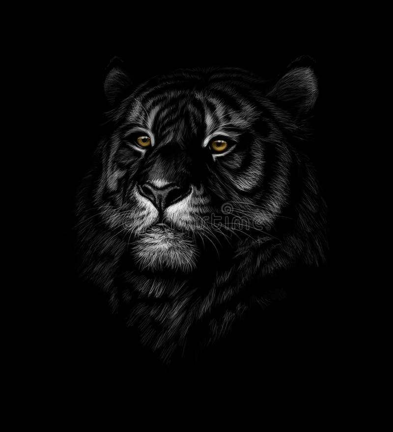 Портрет головы тигра на черной предпосылке иллюстрация штока