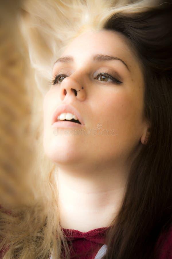 Портрет голов и плечи молодой женщины в свете окна стоковые фото