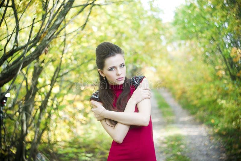 Download Портрет женщины красоты осени Стоковое Фото - изображение насчитывающей красивейшее, женщина: 41662656