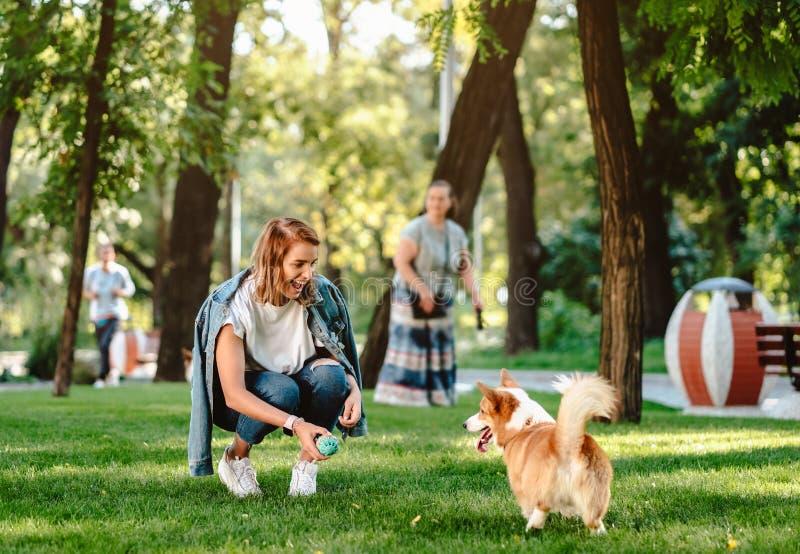 Портрет женщины с Пембруком Corgi валийца собаки в парке собаки стоковое изображение