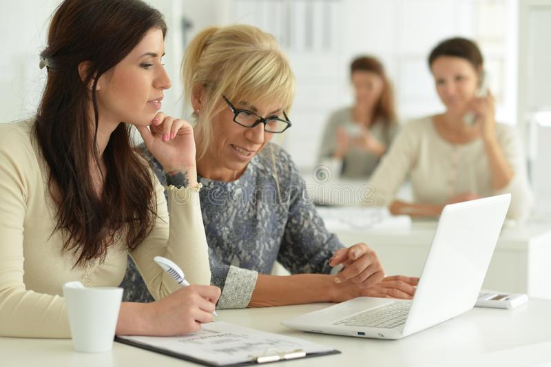 Портрет женщин работая совместно в офисе стоковое фото