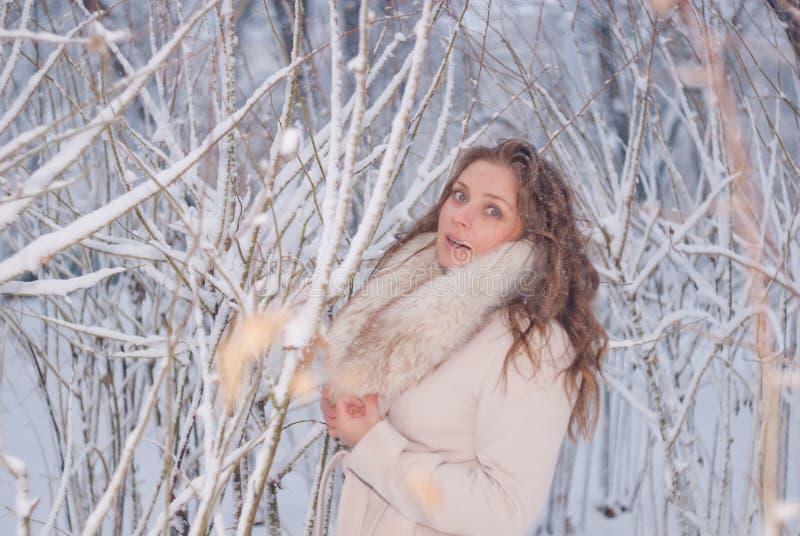 Download Портрет зимы женщины в белом пальто во время снежностей в парке Стоковое Изображение - изображение насчитывающей снежок, сосенка: 81804739