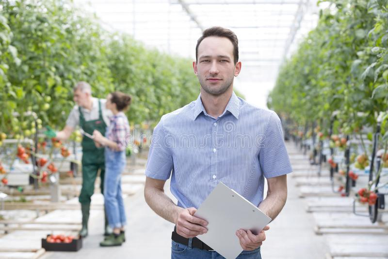 Портрет инспектора с доской сзажимом для бумаги стоя против фермеров на парнике стоковые фото