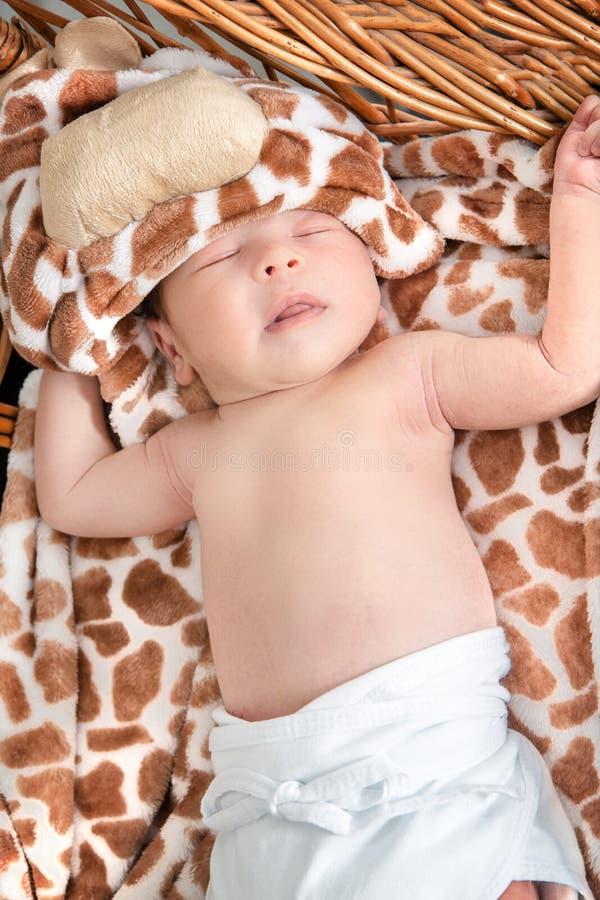 Портрет красивого мальчика лежа в плетеной корзине стоковое фото