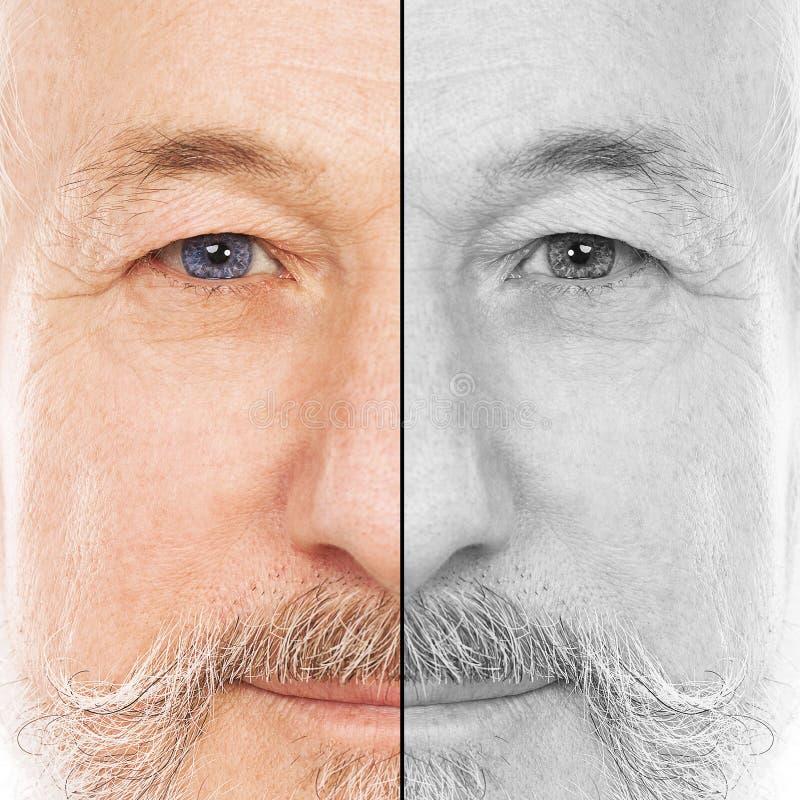 Портрет красивого пожилого человека стоковая фотография