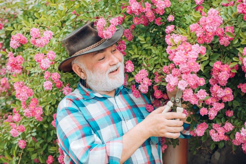 Портрет красивого старого бородатого человека на предпосылке весны Жизнь страны E Счастливый фермер в ковбойской шляпе стоковые изображения