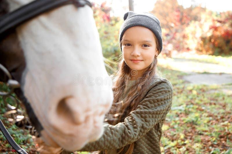 Портрет красивой девушки с пони каштана стоковая фотография rf