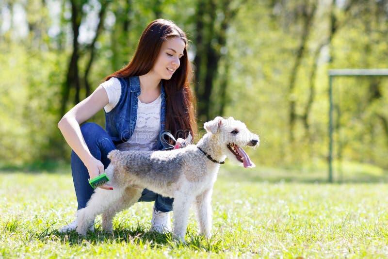 Портрет красивой маленькой девочки с ее собаками стоковая фотография