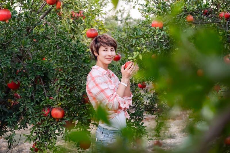 Портрет красивой молодой женщины в красной checkered рубашке смотря камеру и выбирая зрелые органические плодоовощи pomegrate в с стоковое фото