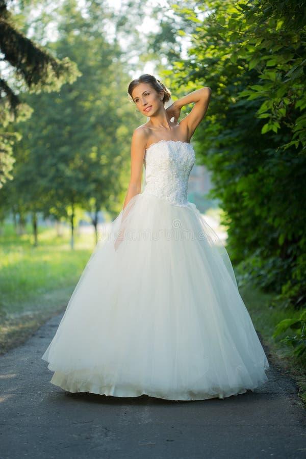 Портрет красивой невесты в парке стоковая фотография
