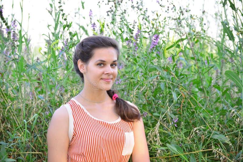 Портрет красивой русской девушки на предпосылке голубых wildflowers стоковое фото rf