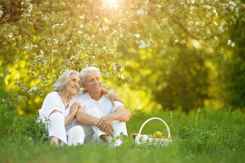 Портрет любить пожилых пар имея пикник стоковое изображение