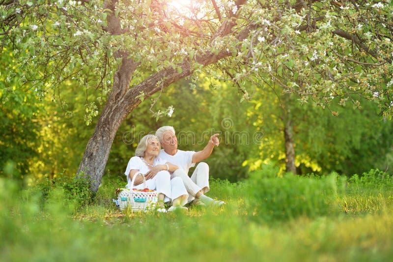 Портрет любить пожилых пар имея пикник стоковые фотографии rf