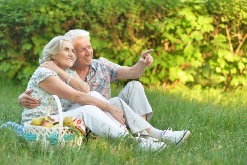 Портрет любить пожилых пар имея пикник стоковая фотография