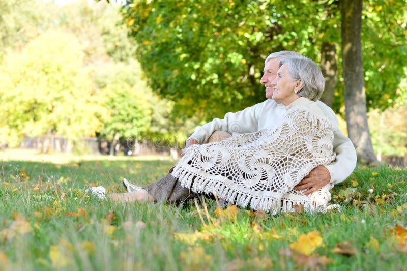 Портрет любить пожилых пар сидя на зеленой траве в парке лета стоковое фото rf