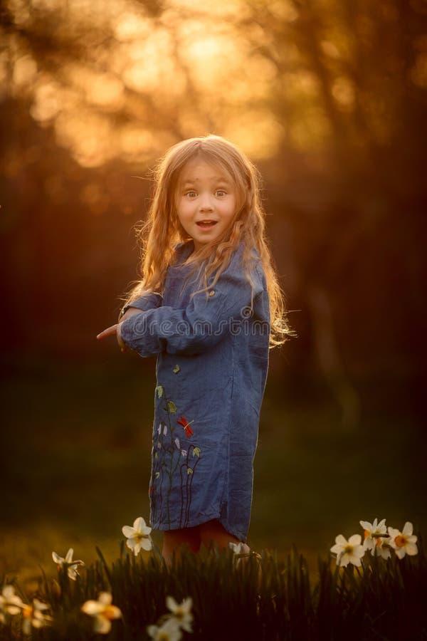 Портрет маленькой девочки на открытом воздухе около цветков narcissus на заходе солнца стоковое фото rf