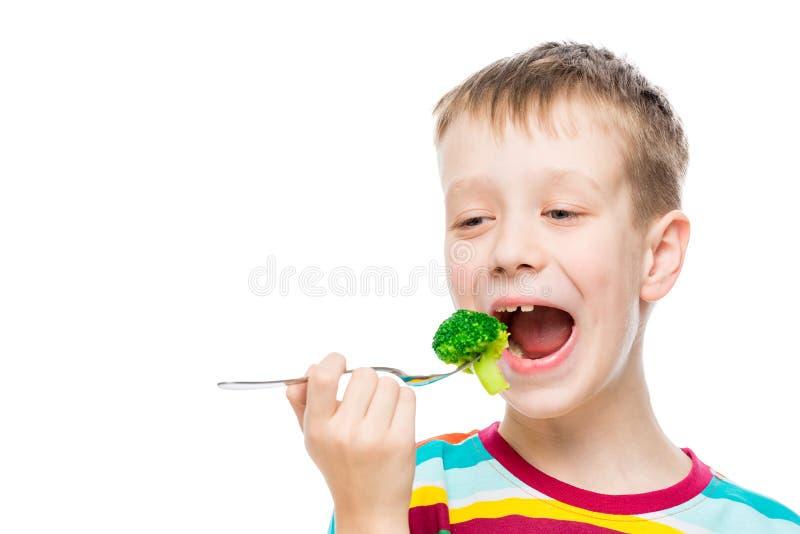 Портрет мальчика на белой предпосылке стоковое изображение rf