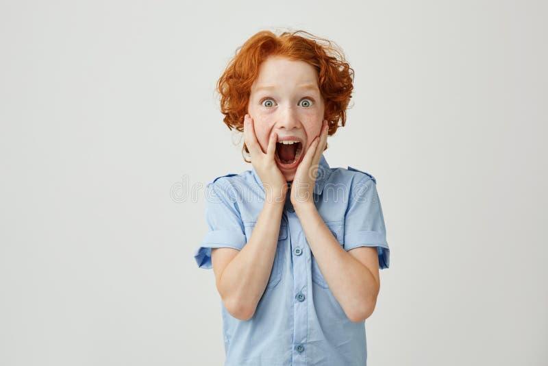 Портрет меньшего мальчика имбиря при веснушки держа руки на щеках, кричащий с устрашенным выражением после видеть стоковое изображение