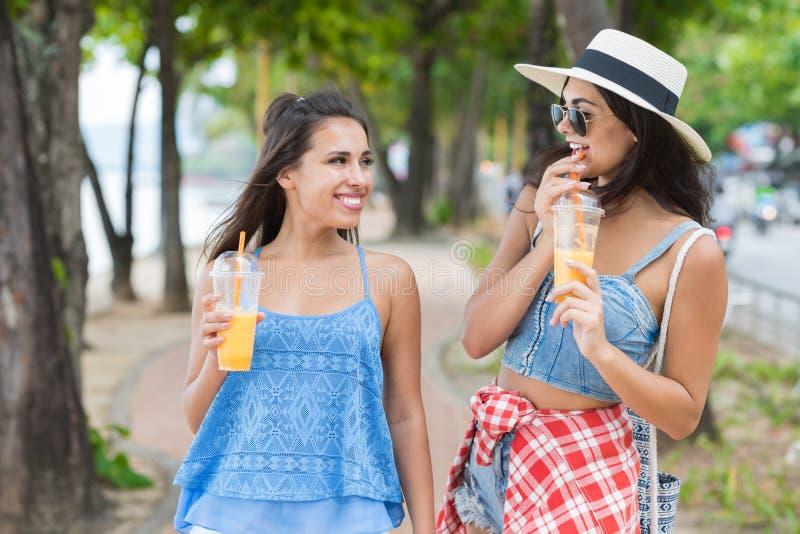 Портрет милой женщины 2 выпивая свежий сок пока прогулка в туристах маленьких девочек парка на каникулах стоковая фотография rf