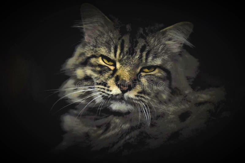 Портрет моего норвежского кота нео стоковое фото
