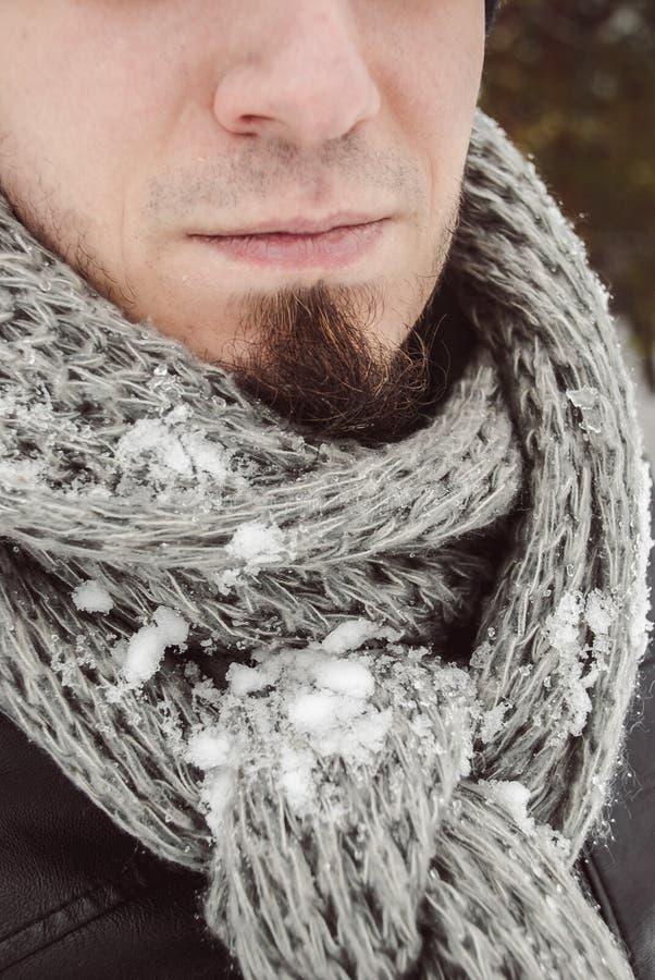 Портрет молодого красивого человека с бородой красивейшие перчатки девушки зеленеют уклад жизни ландшафта над зимой снежка шарфа стоковое изображение