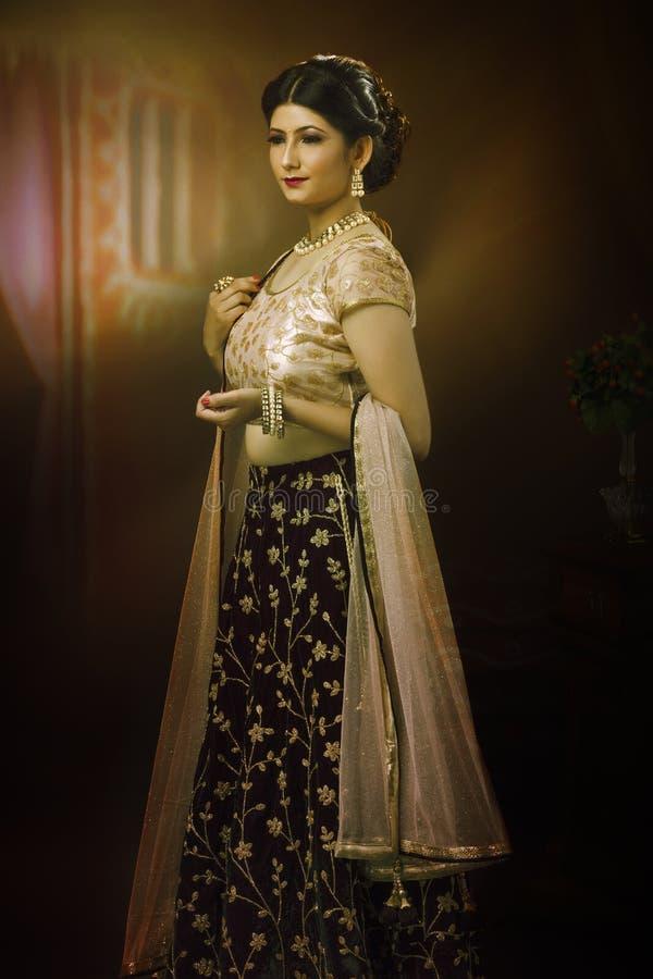 Портрет молодой индийской дамы в традиционной носке стоковое изображение rf