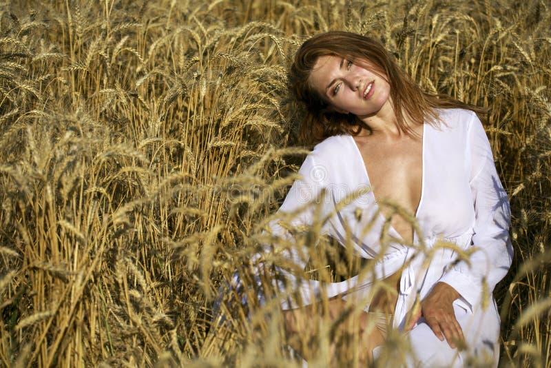 Портрет молодой сексуальной белокурой женщины на предпосылке золотого пшеничного поля стоковые изображения