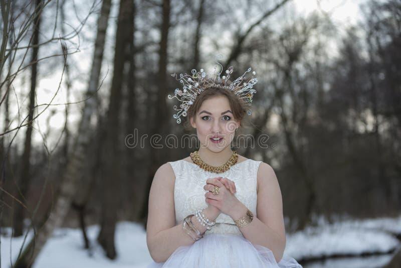 Портрет молодой красивой женщины нося крону с Rhinest стоковые фото