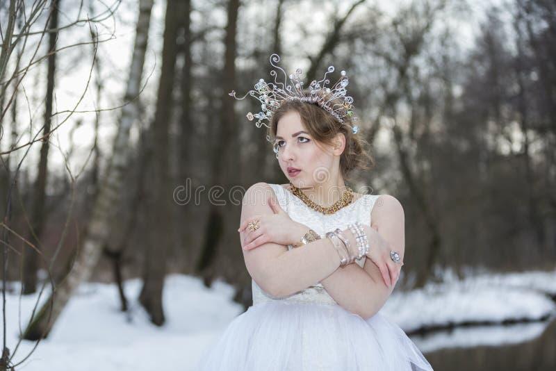 Портрет молодой красивой женщины нося крону с Rhinest стоковое фото rf