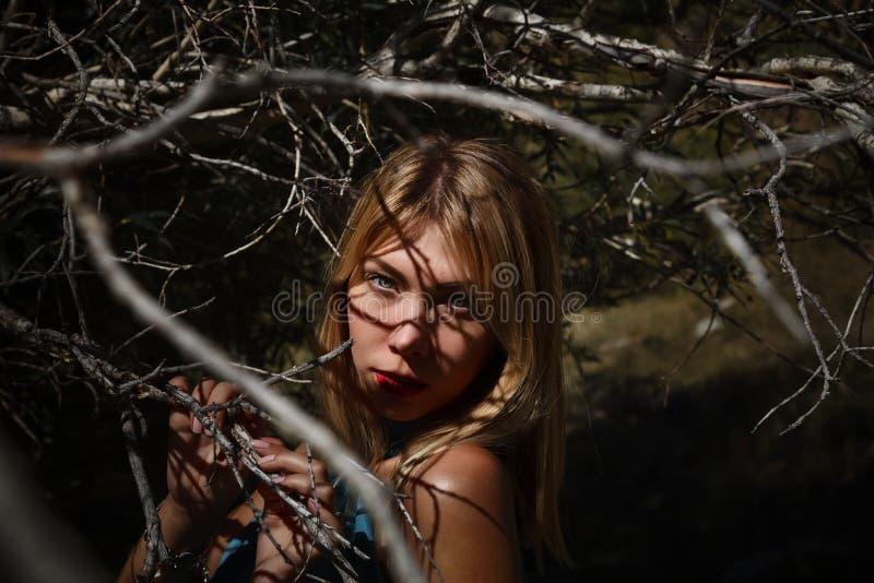 Портрет моды женщины между деревьями стоковые изображения rf