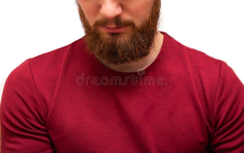 Портрет, мужчина с грязно-коричневой оранжевой бородой, усы и грязные волосы Медвежий хипстер на изолированном белом стоковые фото