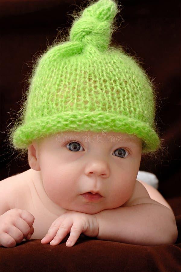 портрет младенца милый стоковые изображения