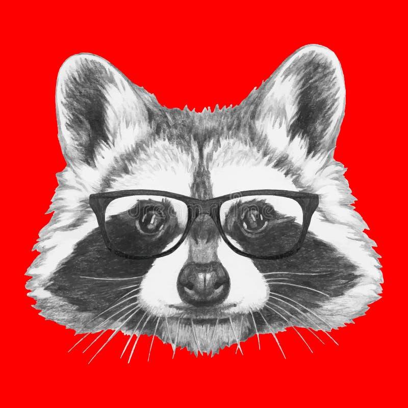 двух енот в очках картинка влияет почки, лисы