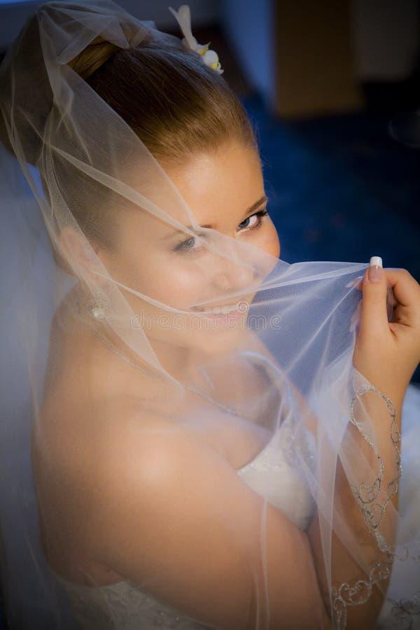 портрет невесты стоковая фотография