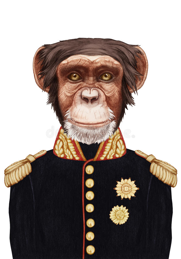 обезьяна в форме картинки дмитрия