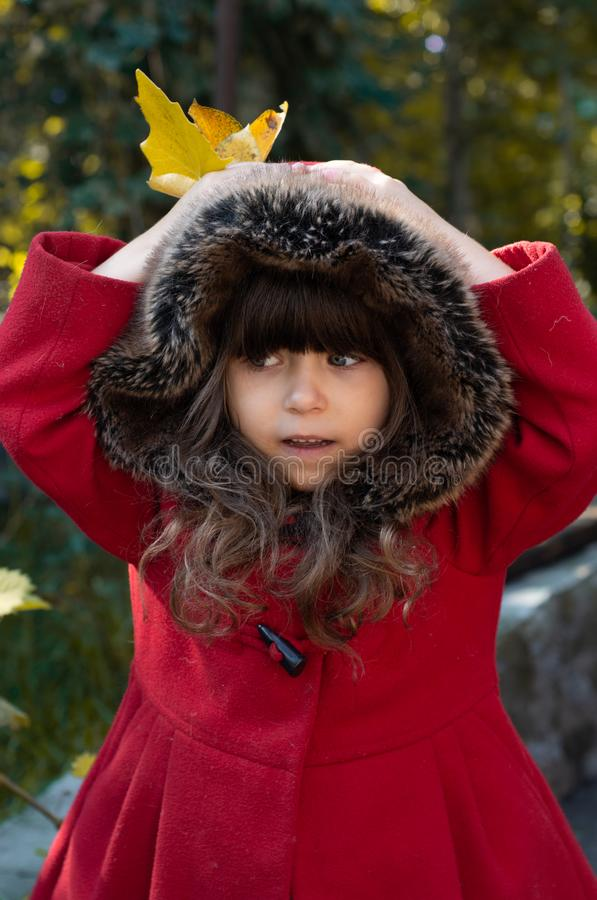 Портрет осени удивленной курчавой девушки Ребенк собирая желтый листопад стоковая фотография rf